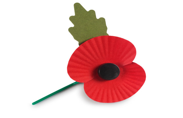 IP police crack down on fake poppy merchandise