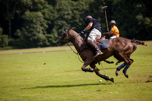 Polo players land killer blow to gTLD
