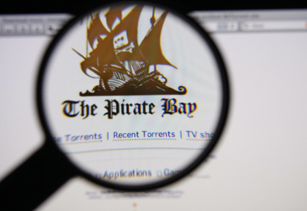 Pro-Pirate Bay student wins domain name