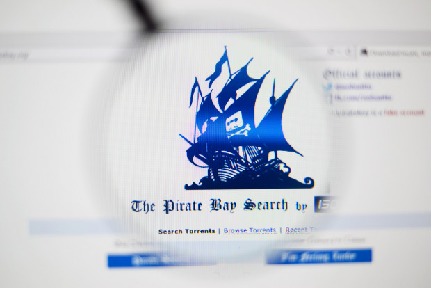 Pirate Bay future unclear after police raid