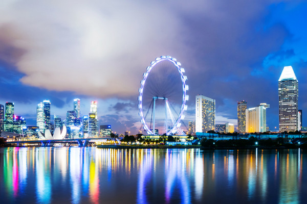 ICANN in Singapore: the year ahead